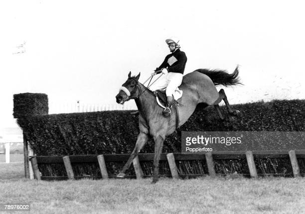 HorseRacing February 1975 Grand National trials Haydock Park Picture shows legendary racehorse Red Rum jumping a fence ridden by Brian Fletcher Red...