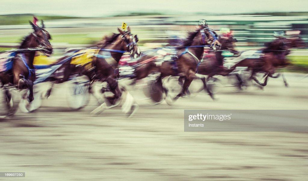 Horseracing : Stock Photo