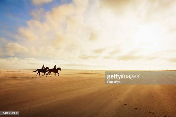 Horseriders cantering across sands on a golden late afternoon