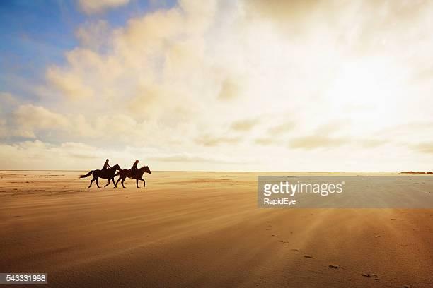 Reiter im Trab auf einen goldenen Sand am späten Nachmittag