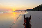 Horseriding on a Sumba beach at sunset