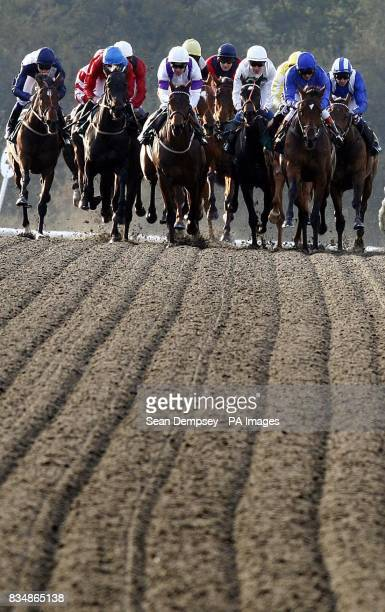 Horses and jockeys during the EBF play bingo at ladbrokescom fleur de lys fillies stakes at Lingfield Racecourse