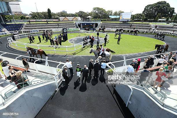 Horses and Jockeys gather in the Theatre of the Horse before the start of race 4 during Sydney Racing at Royal Randwick Racecourse on March 7 2015 in...