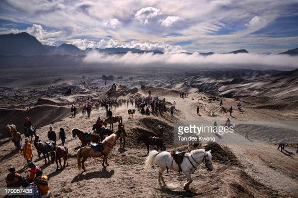 CONTENT] Horses and Ponies waiting to be hired by locals and tourists for the journey up to Mount Bromo Bromo Tengger Semeru National Park