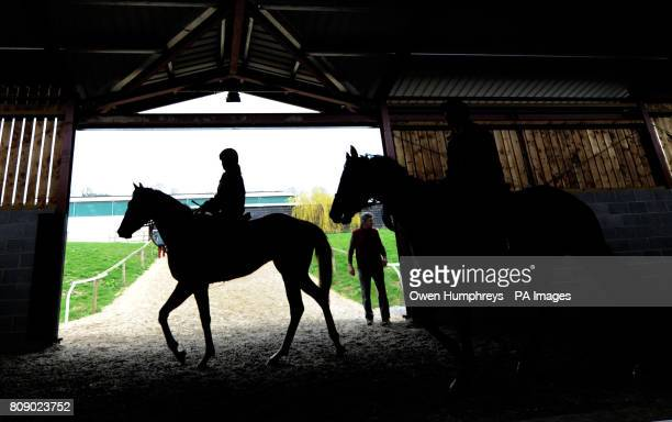 Horses and riders prepare for the gallops during a media day at Musley Bank Stables Malton North Yorkshire