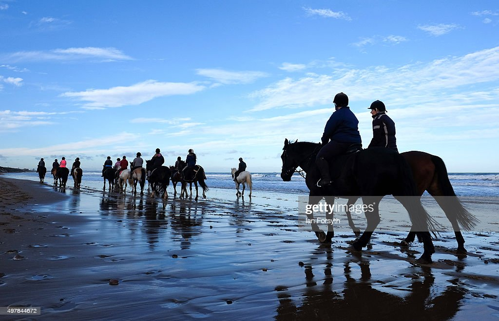 The local riding school exercise their horses on the beach at horses and their riders walk along the waters edge as they take part in the morning sciox Images