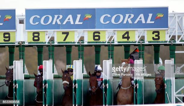 Horses at the start of the Coral Easter Classic allweather middle distance championships conditions stakes during the All Weather Championships...