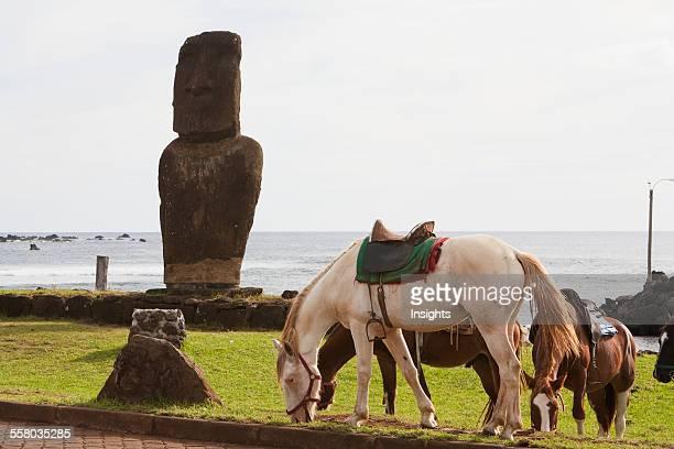 Horses By The Moai Of Ahu Tautira In Hanga Roa Rapa Nui Chile