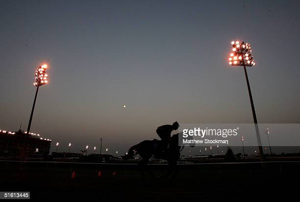 A horses circles the turh track October 29 2004 in the final day preparation for the Breeders' Cup World Throroughbred Championships at Lone Star...