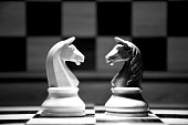 Horses in confrontation on a chessboard.