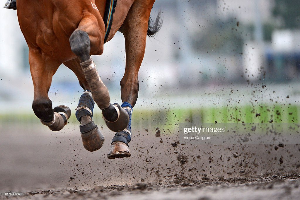 Horses dig up the dirt on the all weather track during a trackwork session at Sha Tin racecourse on May 2, 2013, ahead of the Champions Mile this Sunday in Hong Kong, Hong Kong.