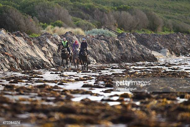 Horses gallop on the sand during a Warrnambool trackwork session at Lady Bay on May 6 2015 in Warrnambool Australia