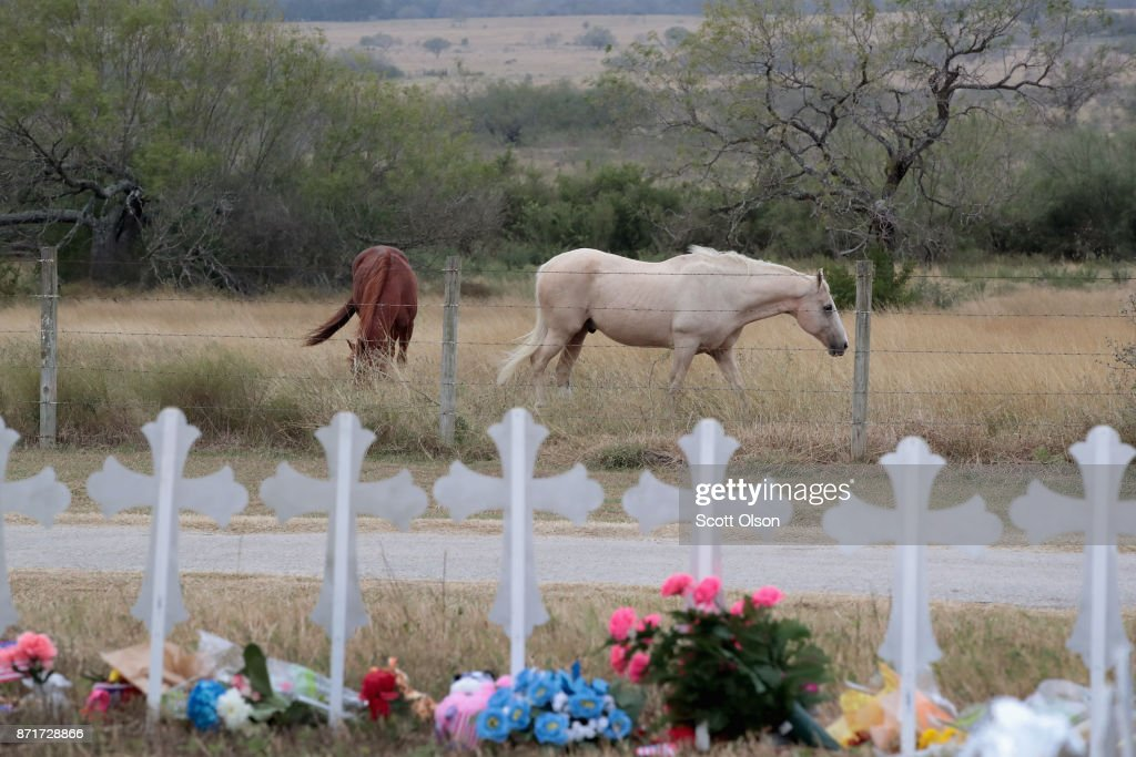 Horses graze in a pasture near a memorial where 26 crosses were placed to honor the 26 victims killed at the First Baptist Church of Sutherland Springs on November 8, 2017 in Sutherland Springs, Texas. On November 5, a gunman, Devin Patrick Kelley, shot and killed the 26 people and wounded 20 others when he opened fire during Sunday service at the church.