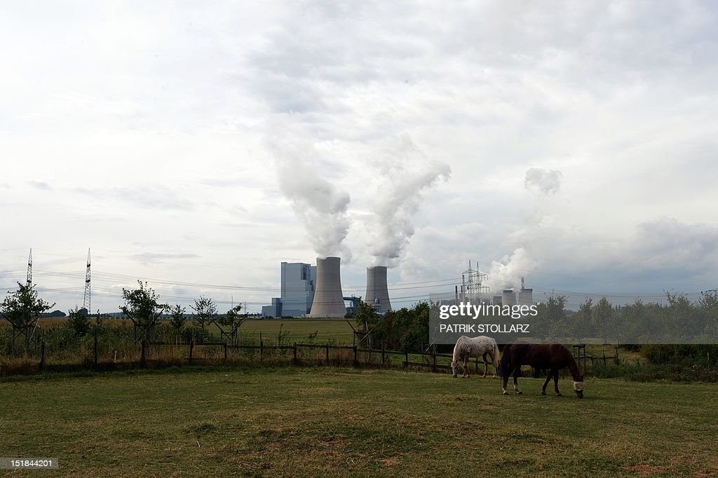 Horses graze in front of the new Neurath lignit coal-fired RWE power station on September 11, 2012 at Grevenbroich near Aachen, western Germany. RWE, one of Germany's major energy provider invested in new coal conducted power plants.