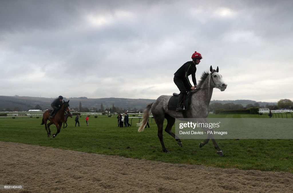Horses head out for an early morning exercise session during Champion Day of the 2017 Cheltenham Festival at Cheltenham Racecourse.