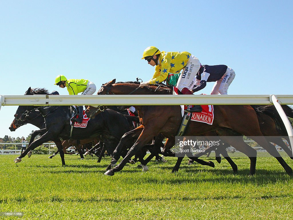 Horses leap from the barrier at the start of race 7 the Emirates Melbourne Cup during Melbourne Cup Day at Flemington Racecourse on November 5, 2013 in Melbourne, Australia.