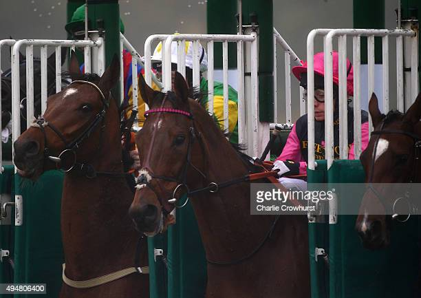 Horses make their way out the starting stalls during the Coral Handicap Stakes at Lingfield Park on October 29 2015 in Lingfield England