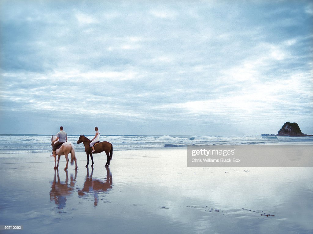 Horses on a beach in New Zealand.