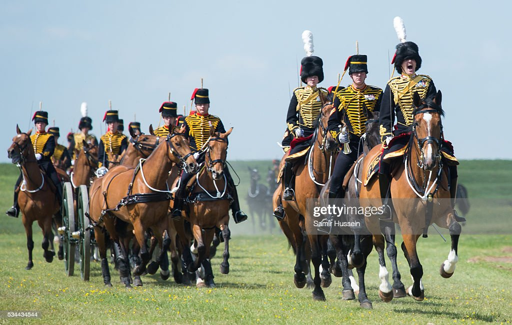 Horses on display at the Royal Review of The Royal Artillery on the occasion of their Tercentenary at Knighton Down on May 26, 2016 in Lark Hill, England.
