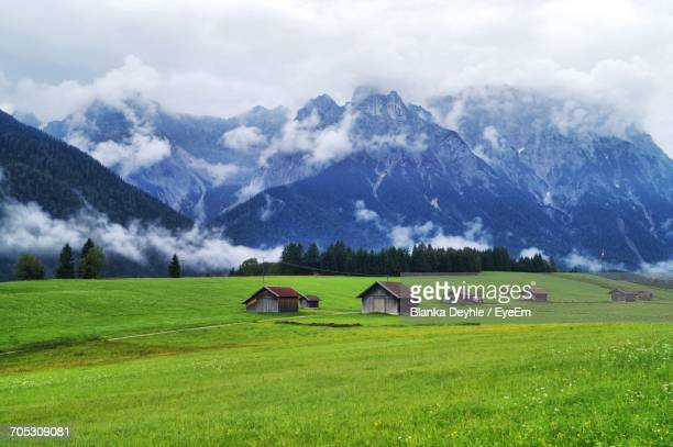 Horses On Grassy Field Against Mountain Range
