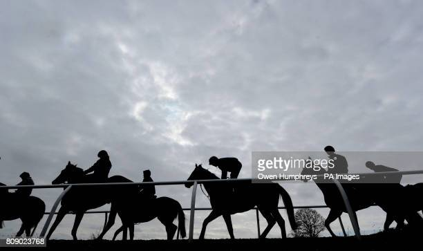 Horses on the gallops during a media day at Musley Bank Stables Malton North Yorkshire