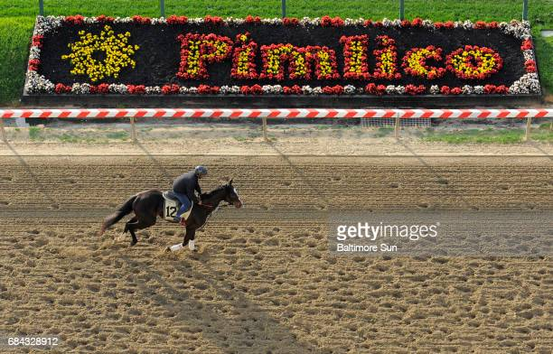 Horses on the track during a morning workout at Pimlico Race Course in Baltimore on Thursday May 14 ahead of the 140th Preakness Stakes on Saturday