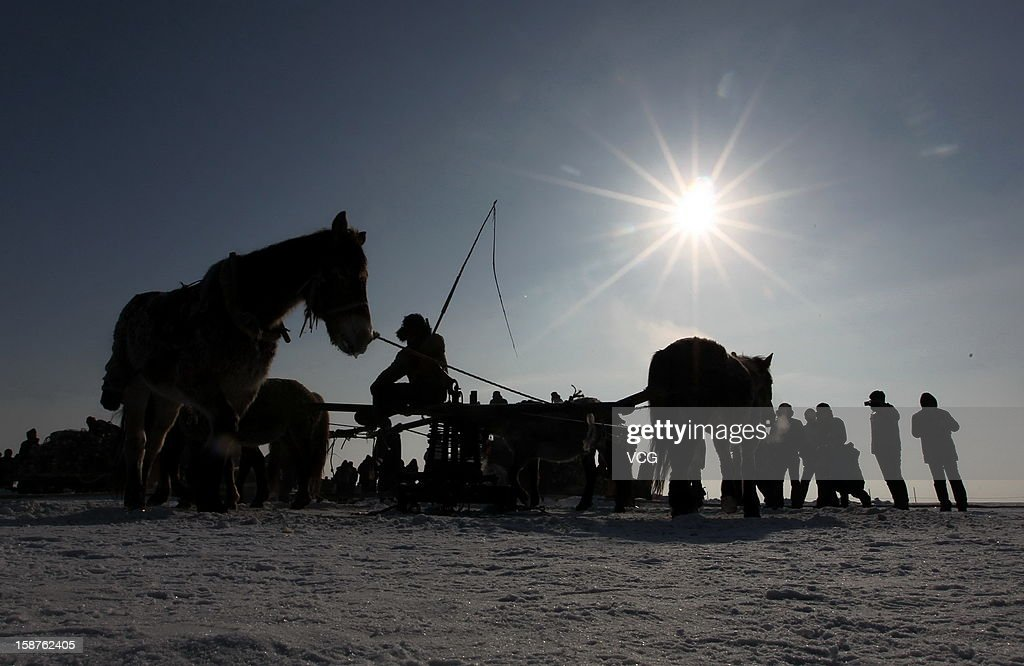 Horses pull an iron capstan, a piece of nautical equipment used to apply force to ropes and cables, to drag the net out of the ice with fresh fish on the frozen Chagan Lake on December 27, 2012 in Songyuan, China. Traditional winter fishing in the Chagan Lake, the biggest freshwater lake in Jilin province, kicked off on Thursday. It usually lasts about two months and has been popular for more than 1,000 years.