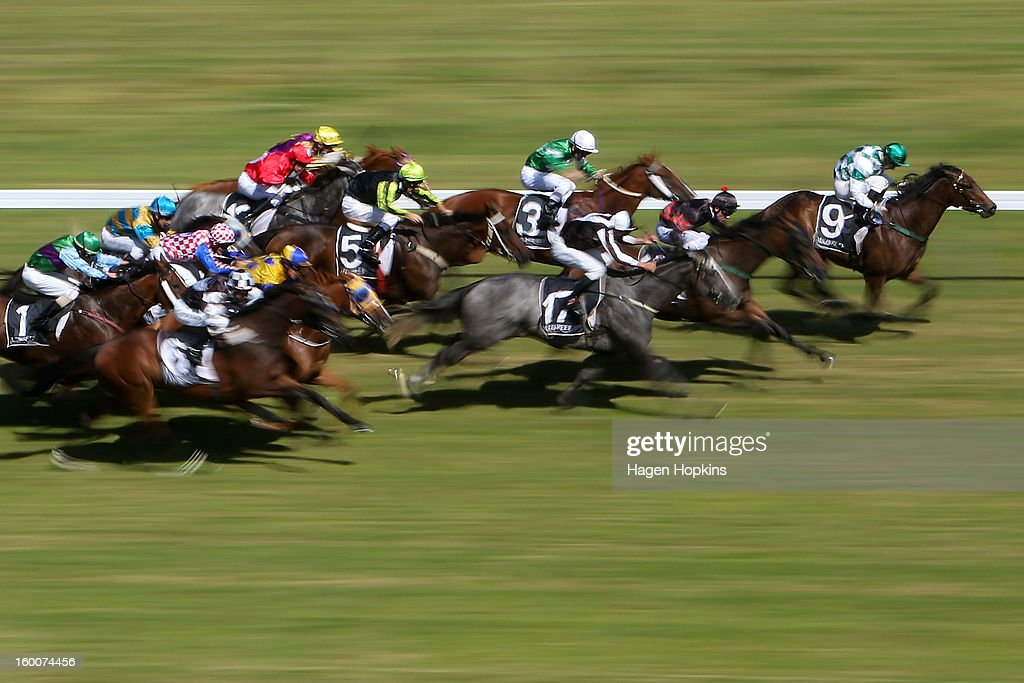 Horses race in the 1600m John Turkington Forestry Duoro Cup during Wellington Cup Day at Trentham Racecourse on January 26, 2013 in Wellington, New Zealand.