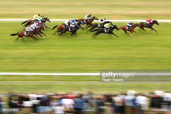 Horses race in the Blue Star Group Premier 1200m during Wellington Cup Day at Trentham Racecourse on January 21 2017 in Wellington New Zealand