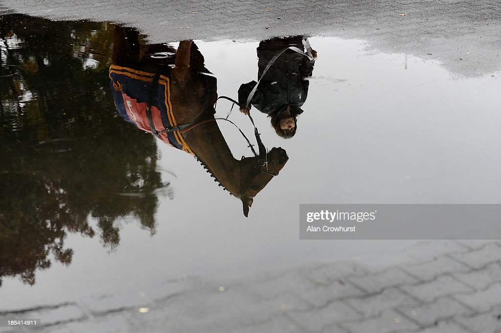 A horses reflection in a puddle on a wet day at Kempton Park racecourse on October 20, 2013 in Sunbury, England.