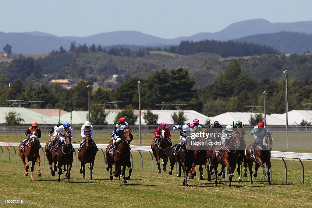 Horses run down the home straight in the 1600m Group III Tiger Prawn Desert Gold Stakes during Wellington Cup Day at Trentham Racecourse on January 26, 2013 in Wellington, New Zealand.