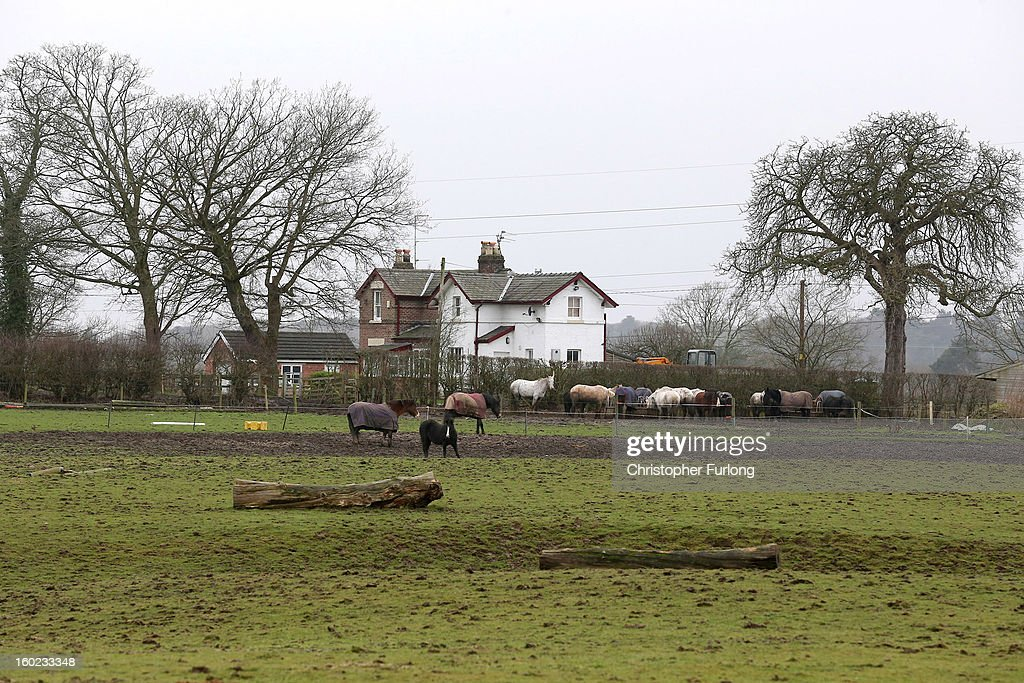 Horses stand in the field of a farm near to the planned location of new HS2 high speed rail link near the village of Ashley on January 28, 2013 in Altrincham, United Kingdom. The government has today released details of the next phase of the GBP 32 billion HS2 high-speed rail network, which will link Manchester and Leeds.