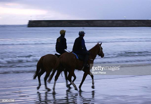 Horses train in the ocean at Warrnambool Beach in preperation for the Warrnambool Grand Annual Steeple at Warrnambool Race Course May 6 2004 in...