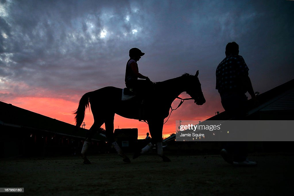 Horses walk in the stable yard as the sun rises during morning workouts for the 2013 Kentucky Derby at Churchill Downs on May 3, 2013 in Louisville, Kentucky.