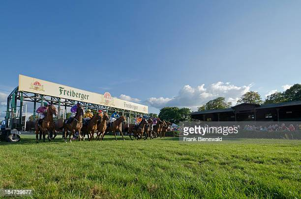 Horses with their jockeys starting a race out of the starting box seen from the front