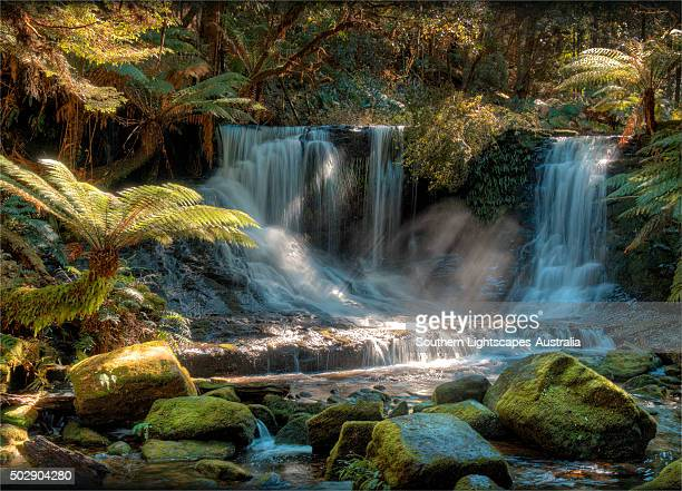 Horseshoe Falls in the rainforest of the Mount field National Park, southern Tasmania.