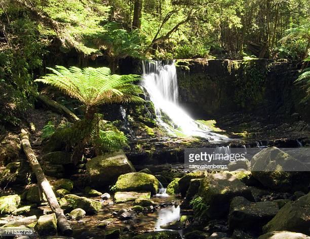 Horseshoe-Wasserfall
