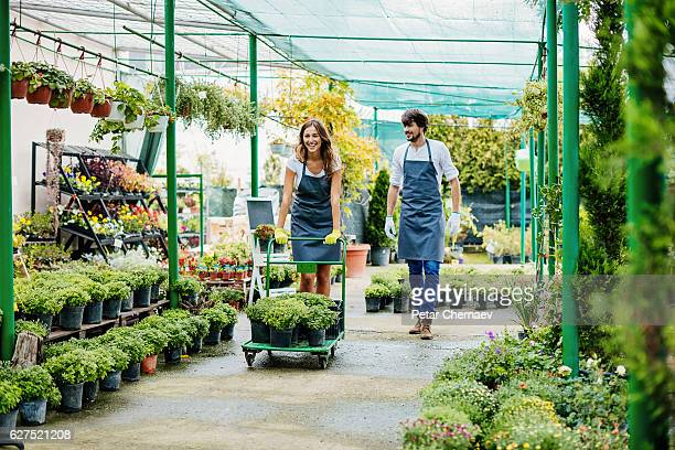 Horticulture business