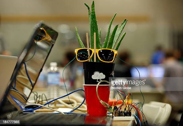 @hortontheplant an plant that was wired to make humorous tweets pertaining to information gathered by various sensors placed to measure things like...