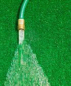 Hose running water on artificial grass