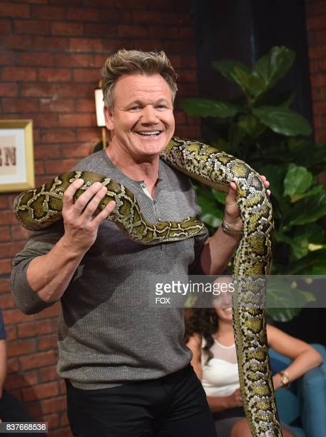 Host Gordon Ramsay in the allnew Episode Eight episode of THE F WORD WITH GORDON RAMSAY airing Wednesday July 26 on FOX