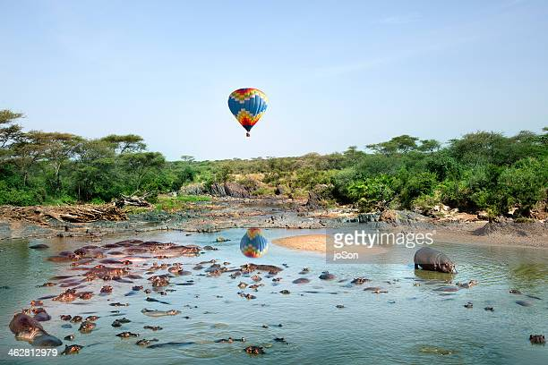 Hot air Balloom over Hippopotamus pool