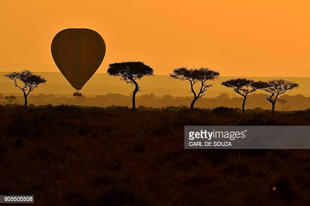 TOPSHOT A hot air balloon carrying tourists is pictured during the annual wildebeest migration in the Masai Mara game reserve on September 14 2016 /...