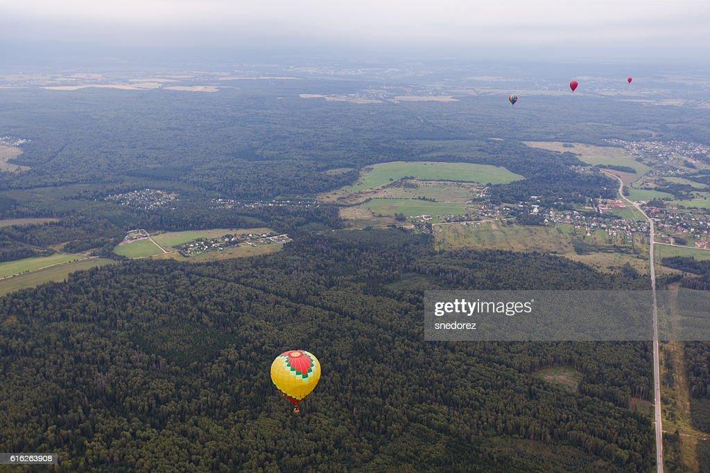 Hot air balloon near trees : Stock Photo