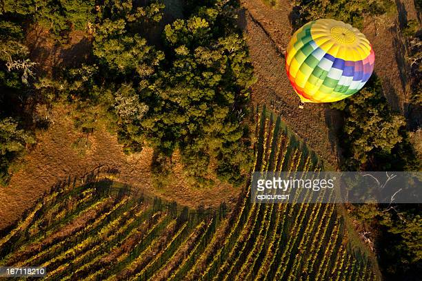 Hot air ballooning over a vineyard in Napa Valley