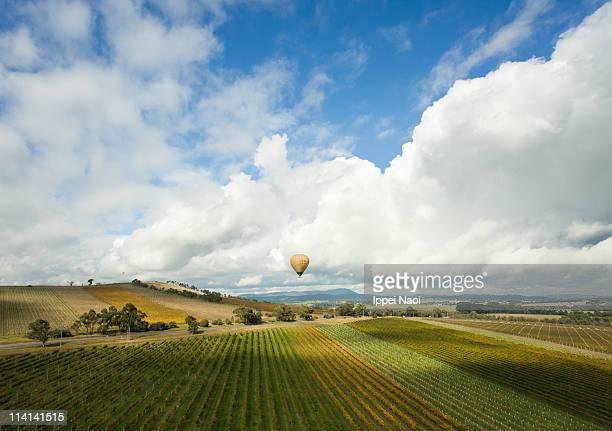 Hot air ballooning over vineyards of Yarra Valley