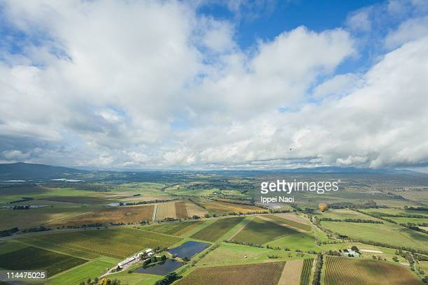 Hot air ballooning over vineyards of Yarra Valley