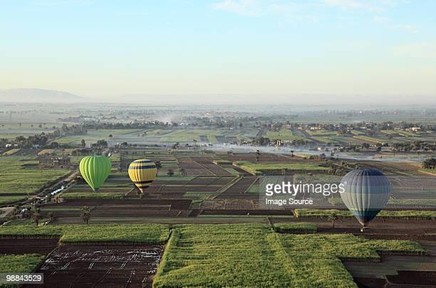 Hot air balloons over fields near luxor