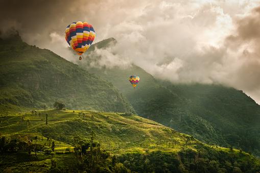 Hot air balloons over tea plantations