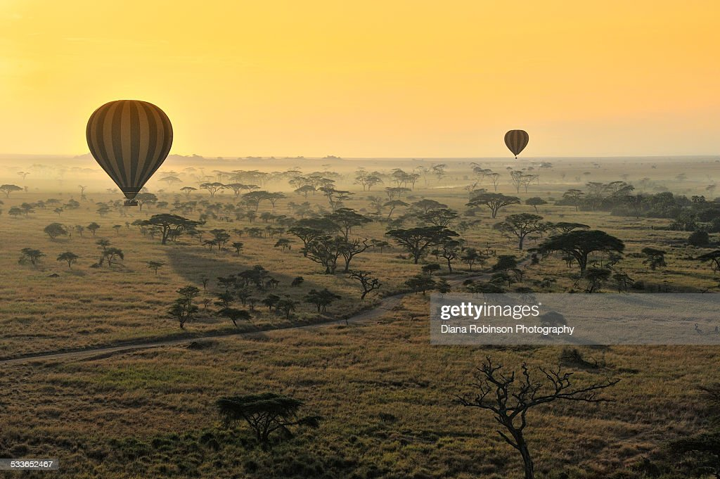 Hot Air Balloons Over the Serengeti
